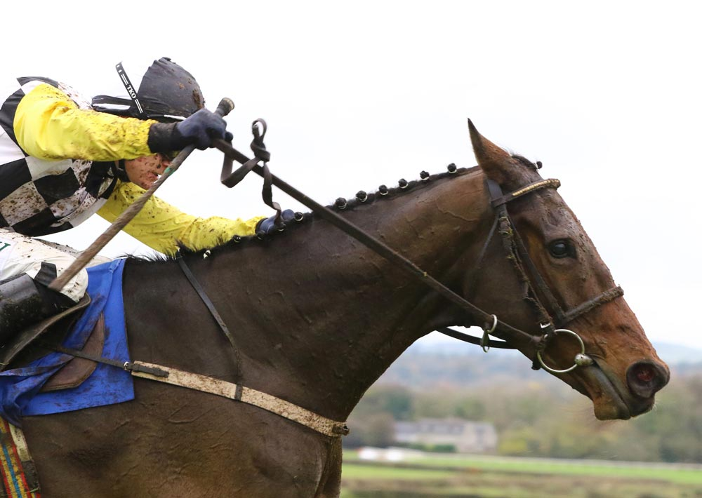 Big names bound for Naas as Grade 1 action returns