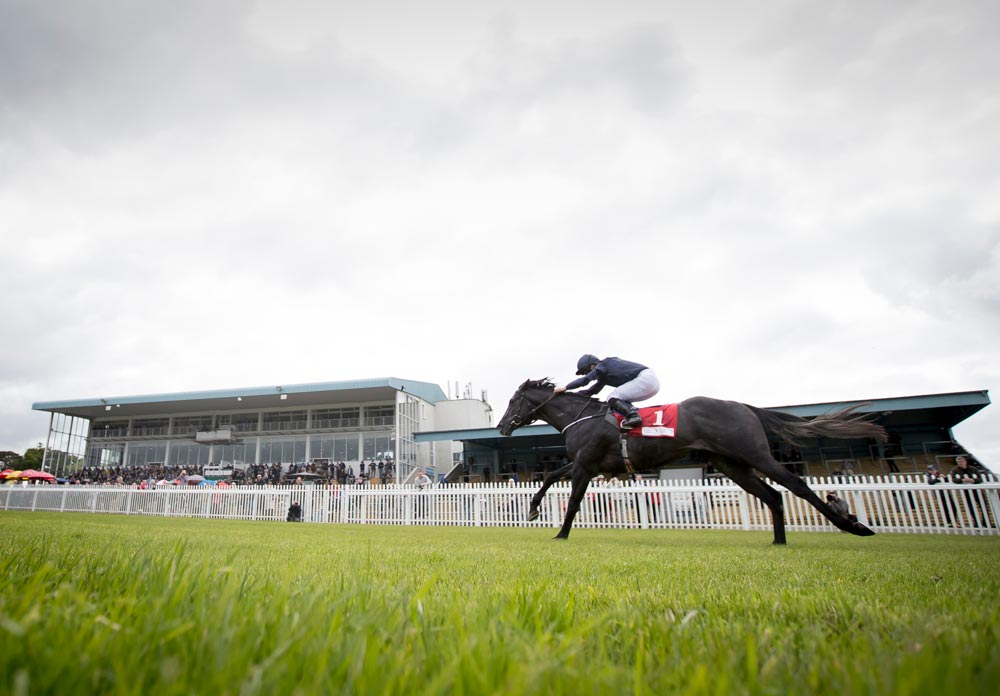 Royal Ascot clues aplenty at Naas this weekend