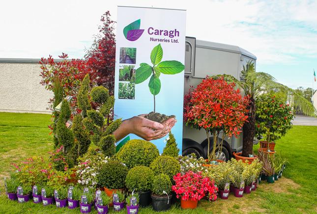 Caragh Nurseries Signage
